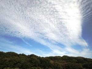 sky-w022