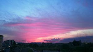 sky-s005hino