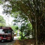 Sri Lanka紀行2017 ~スリランカ文化事情~