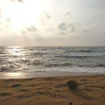 Sri Lanka紀行2017 ~渡航前準備編~